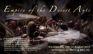 Empire of the Desert Ants