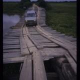 The trick is to use bits of the bridge you have already crossed to fill in the gaps in the bridge ahead, Pantanal, Brazil. 'Andes to Amazon', 1997