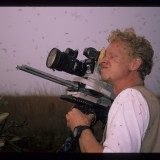 Trying not to inhale - filming a termite emergence, Brazil. 'Andes to Amazon' 1999