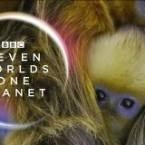 BBC1, Seven Worlds, One Planet broadcast